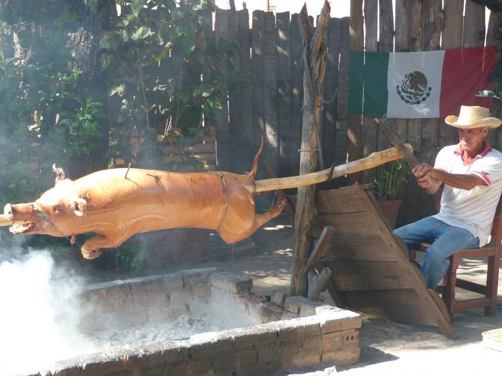 blog-cuba-trinidad-varken