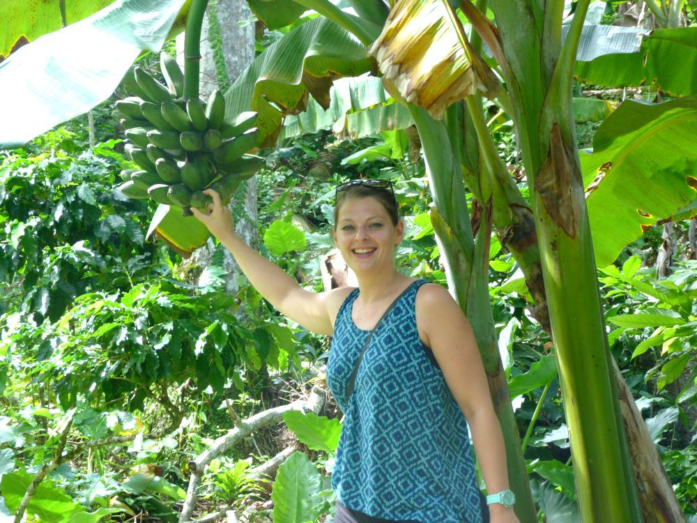 cuba-tips-baracoa-fruit