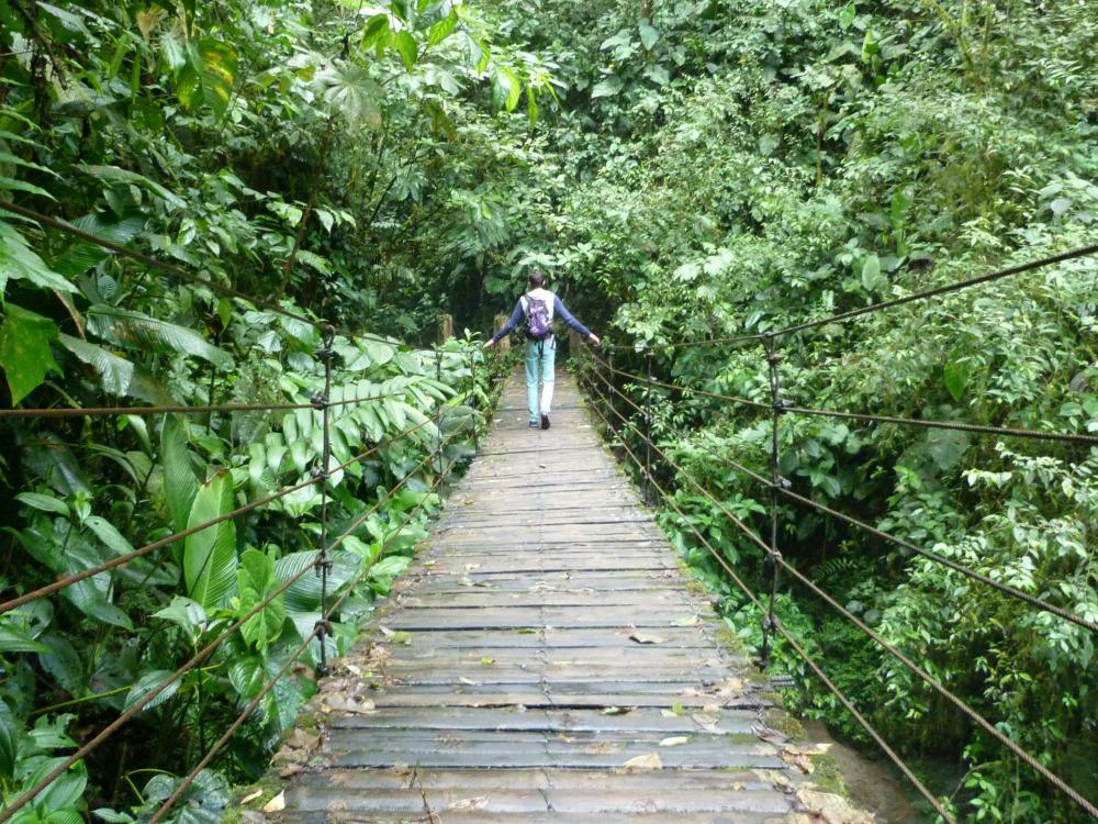 ecuador-mindo-wandeling-brug