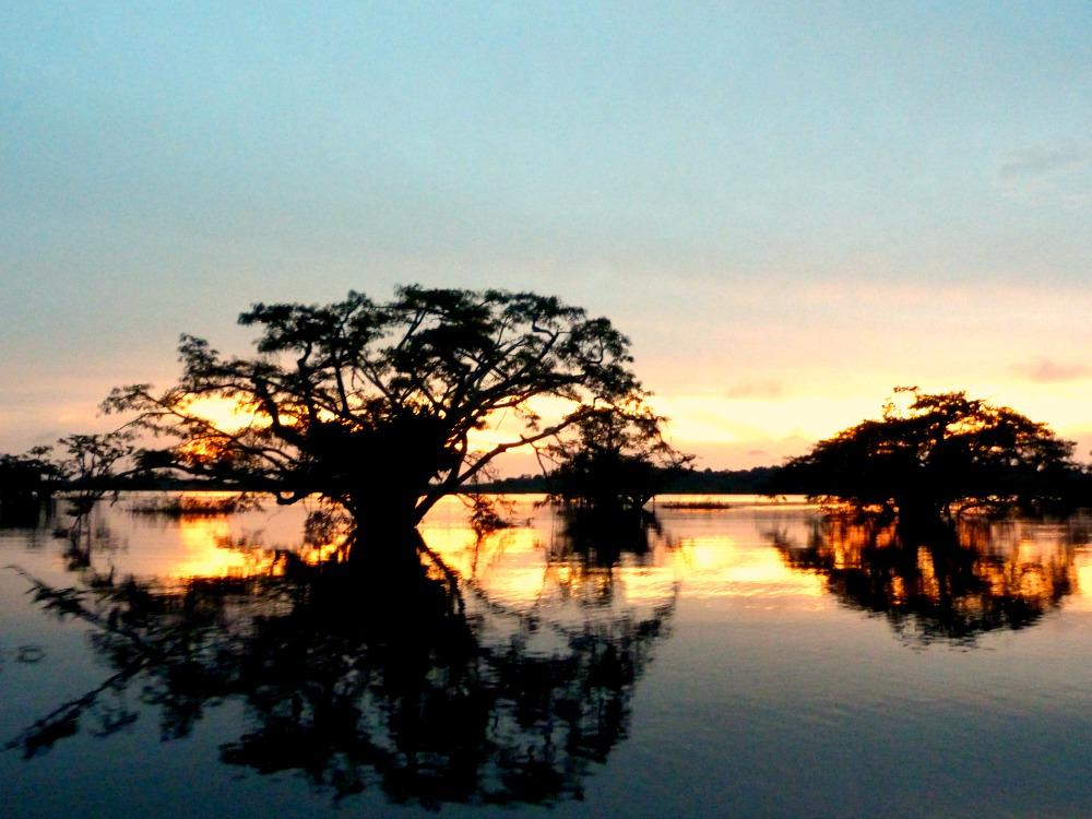 amazone-cuyabeno-zonsondergang-lagune