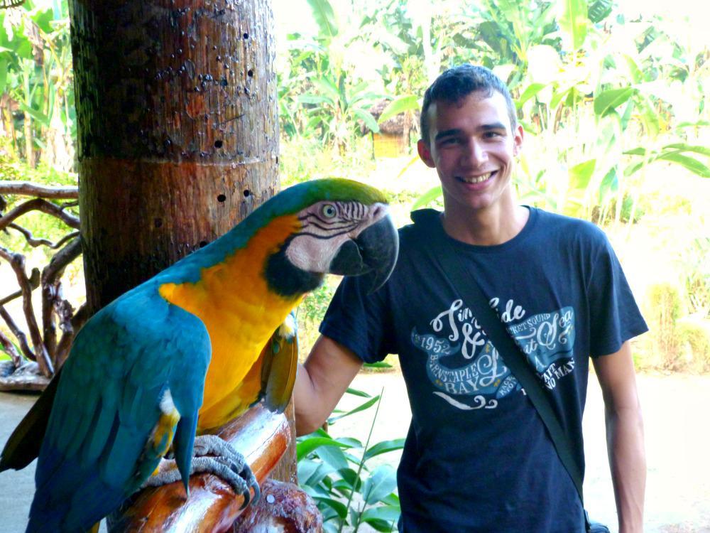 update-twee-maanden-jesus-papegaai
