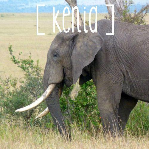 bestemmingen-landen-kenia