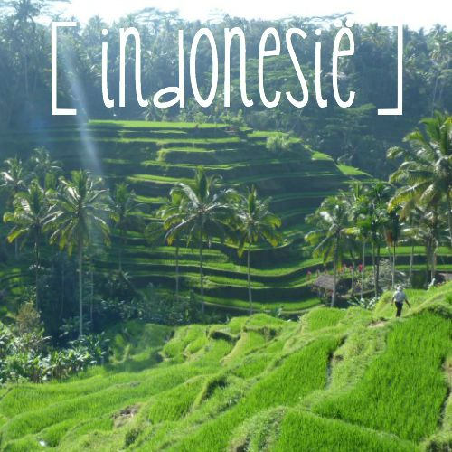 bestemmingen-overzicht-landen-indonesie-bali