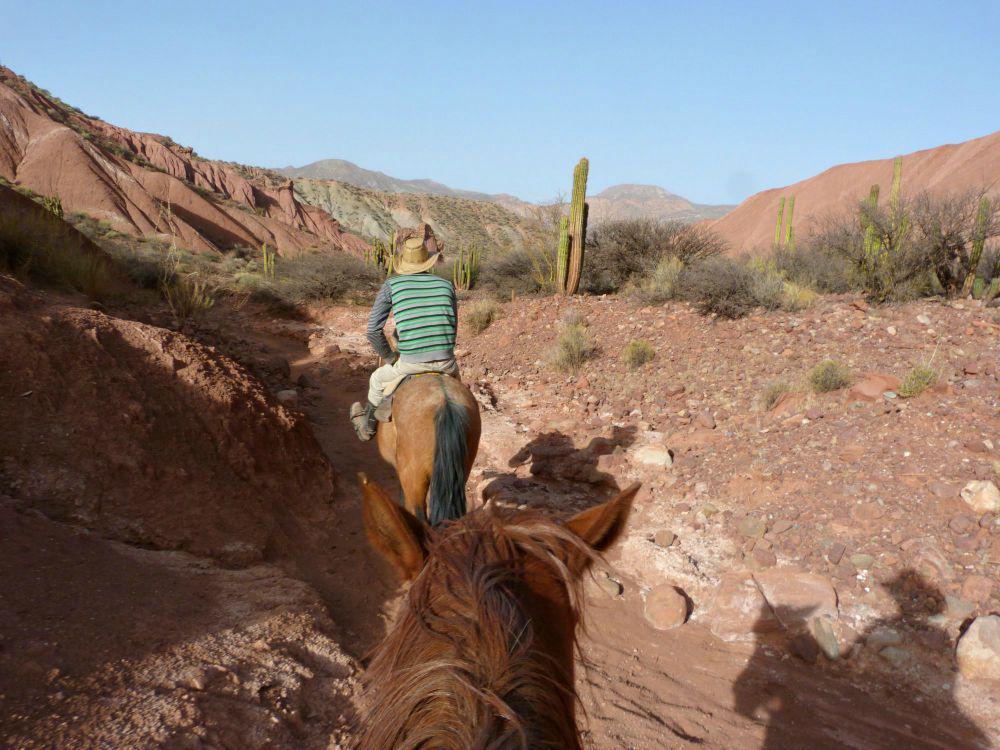 bolivia-reis-paardrijden-tupiza