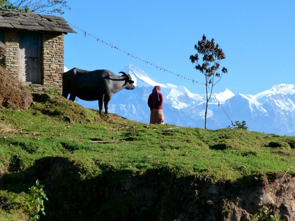 tien-mooiste-reisfotos-nepal-himalaya-min