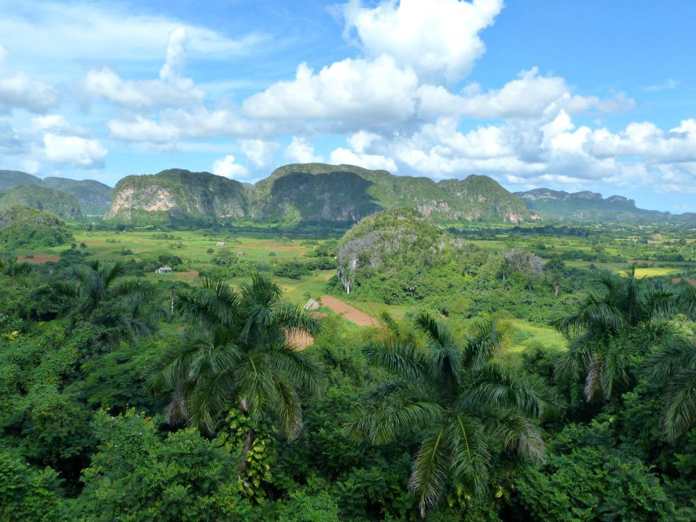 cuba-vinales-uitzicht-jazmines