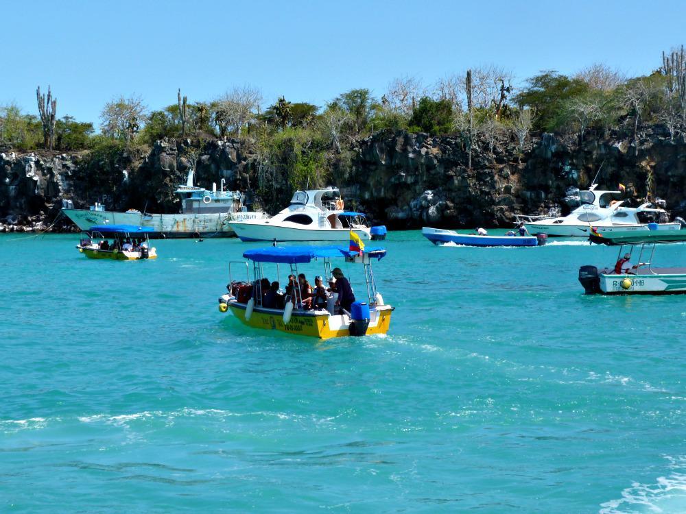 galapagos-santa-cruz-haven-bootjes