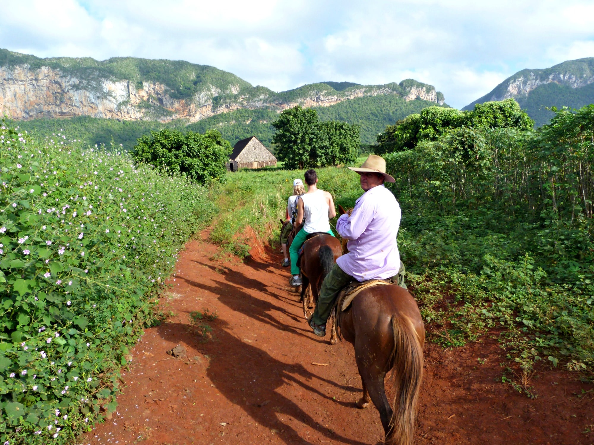 excursion-caballo-vinales-cuba-2