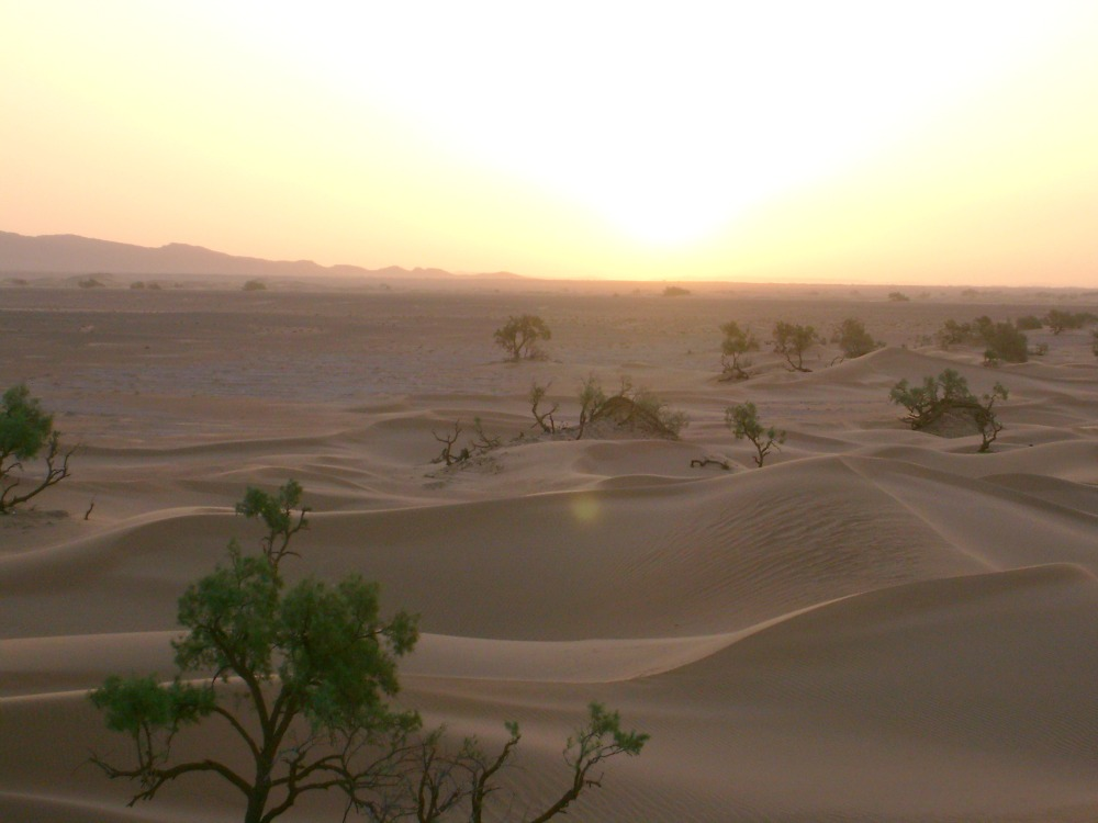 marokko-reis-openbaar-vervoer-sunrise-woestijn