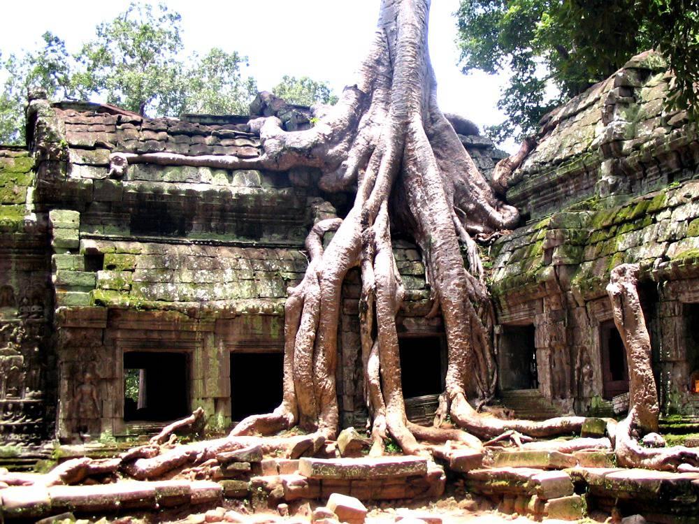 angkor-wat-ta-prohm-cambodja