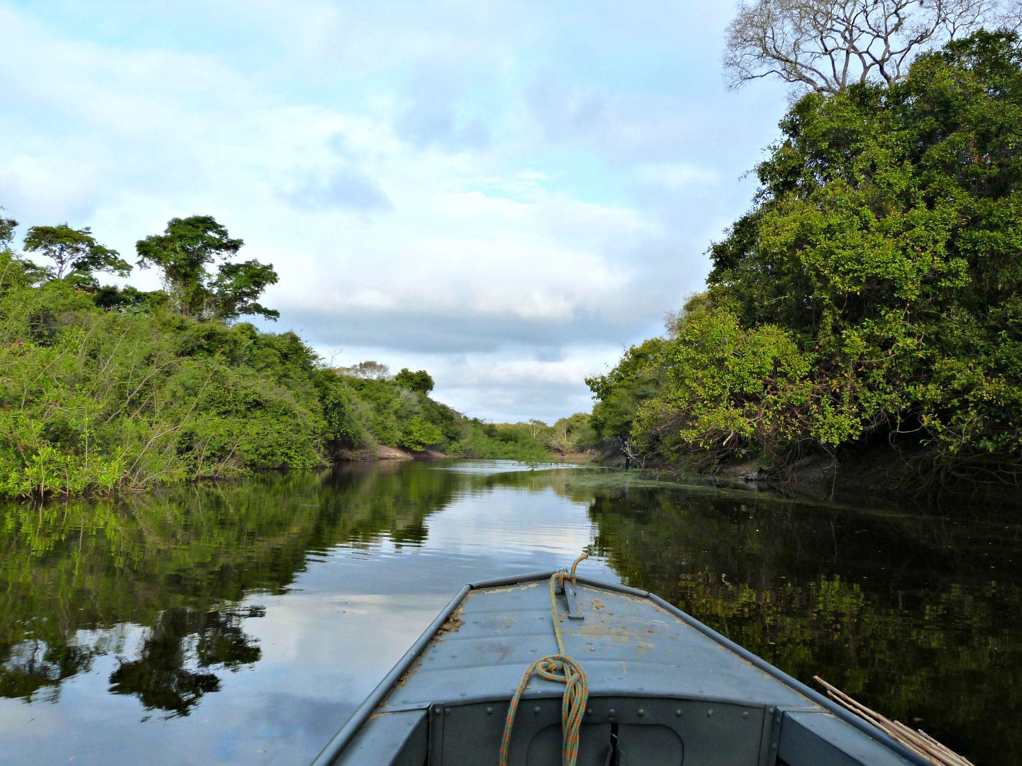 pantanal-brazilie-boottocht-rivier