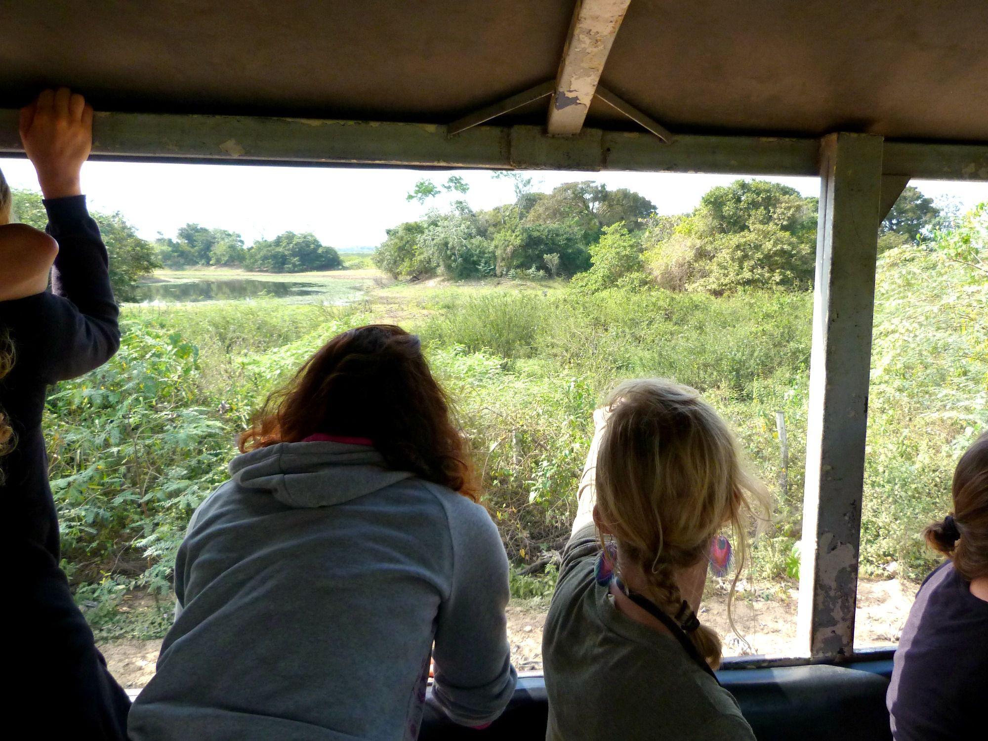 pantanal-brazilie-veetruck-safari