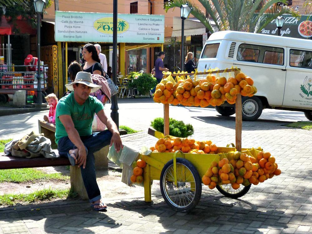 brazilie-reis-budget-fruitkraam