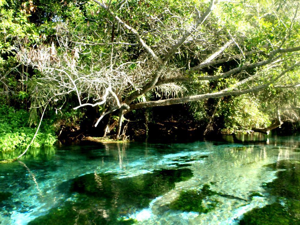 snorkelen-rivier-brazilie-bonito