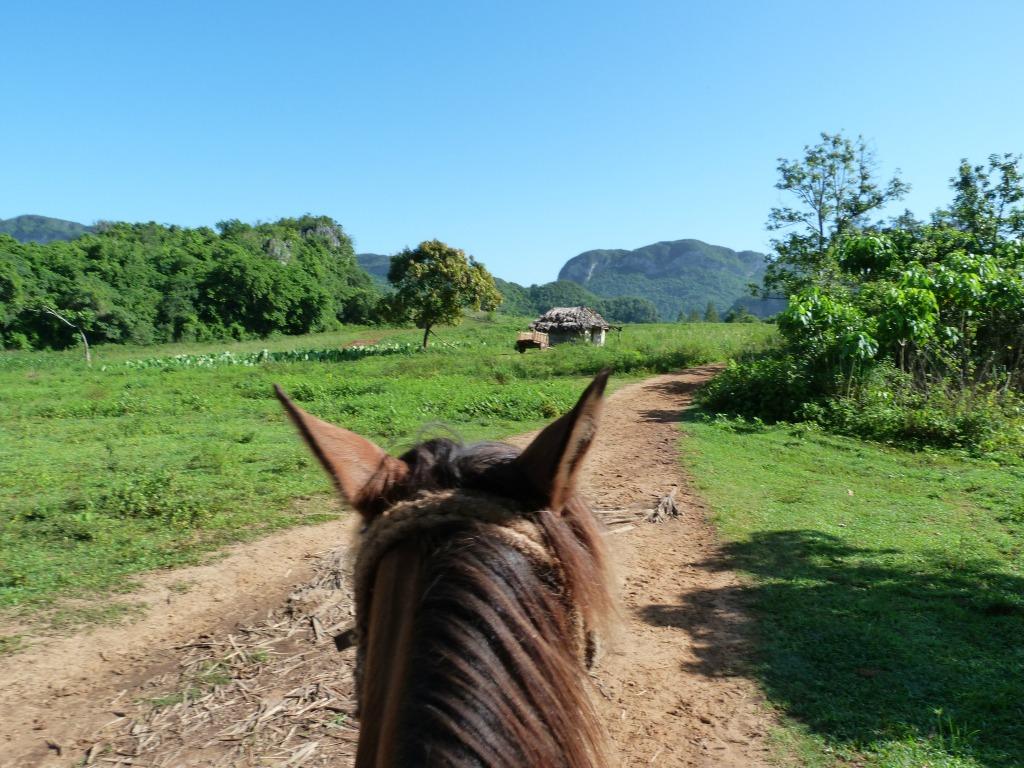 paardrijden vinales cuba