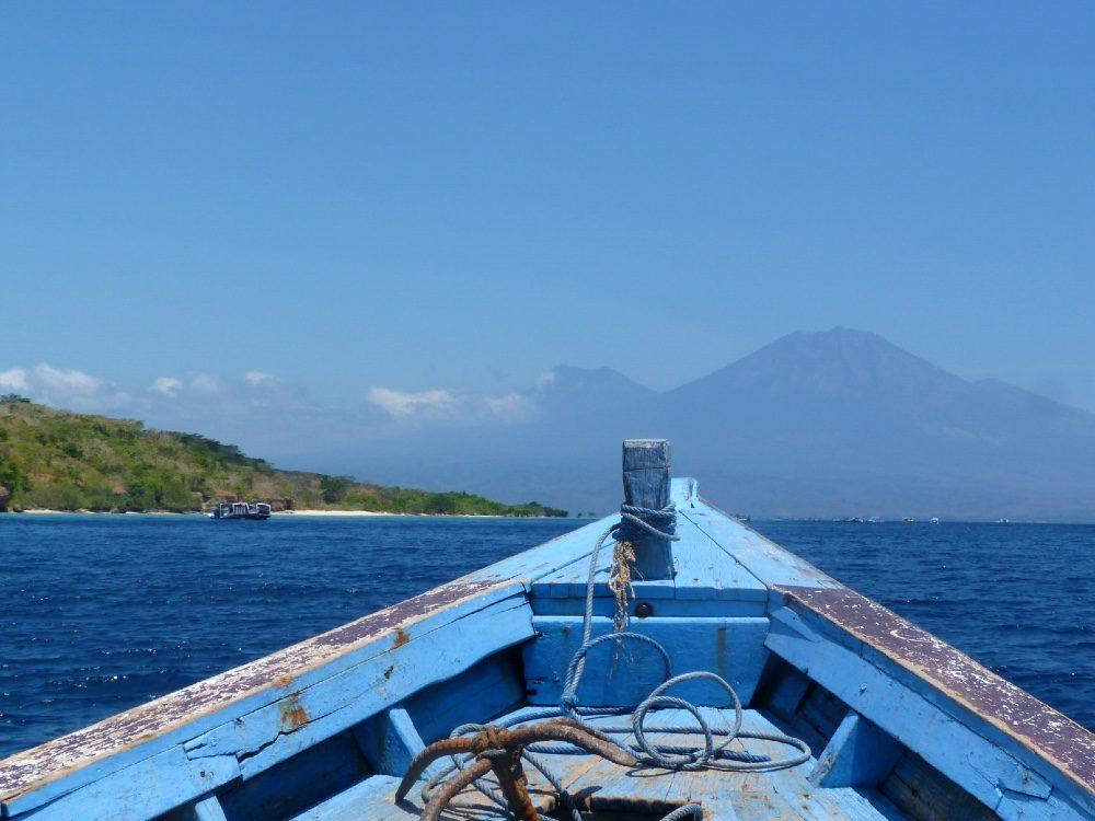 wat doen bali excursies - menjangan